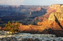 grand_canyon_(9259)_web800